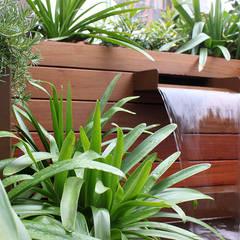 حديقة تنفيذ La Habitación Verde