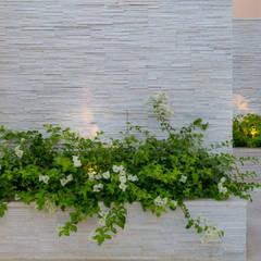 Hortus Dubai Projects:  Rock Garden by Hortus Associates