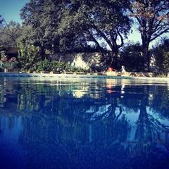 Sıdar Pool&Dome Yüzme Havuzları ve Şişme Kapamalar – Havuzun tamamlanmış hali:  tarz Bahçe havuzu