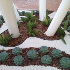 Jardim de inverno de uma Área de Lazer: Jardins minimalistas por Luzia Benites - Arquiteta Paisagista