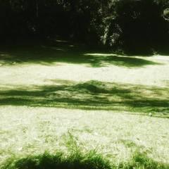 Bodegas de jardín de estilo  por Línea de tierra