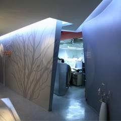 K&C office: kimapartners co., ltd.의  회사