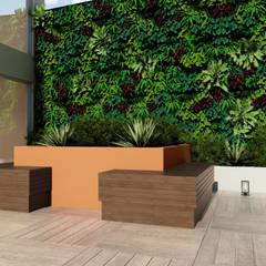 Jardines de invierno rústicos de Adriana Costa Arquitetura Rústico