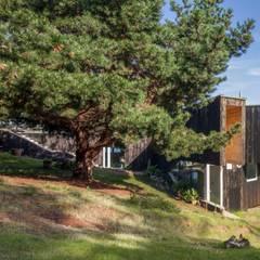 منزل خشبي تنفيذ Crescente Böhme Arquitectos