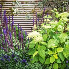 An outside entertainment area come rain or shine:  Garden by Kate Eyre Garden Design