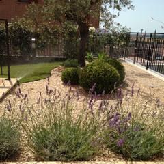 Giardino Zen Paesaggio Idee E Foto L Homify