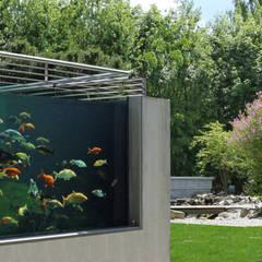 RAUCH Gaten- und Landschaftsbau GbR:  tarz Bahçe süs havuzu