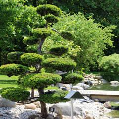 Garden Pond by RAUCH Gaten- und Landschaftsbau GbR