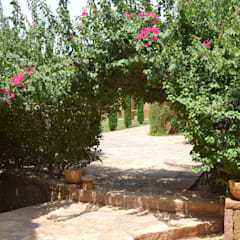 Wadi Hanifa Garden: Giardino in stile  di arch. Valerio Cozzi