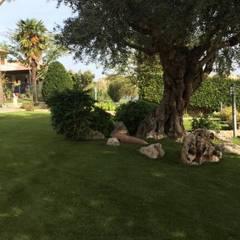 Restyling giardino privato in erba sintetica: Giardino in stile  di PratoSempreVerde