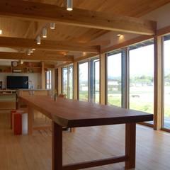 長~い家: 田村建築設計工房が手掛けたリビングです。