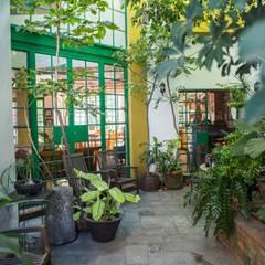 Jardin: Jardines de estilo  por Bojorquez Arquitectos SA de CV