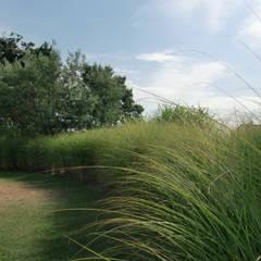 Jardin de graminées: Jardin de style  par KAEL Createur de jardins