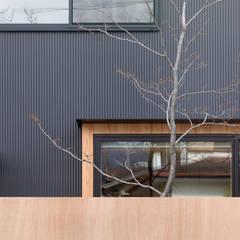 一級建築士事務所 SAKAKI Atelier:  tarz PVC pencereler