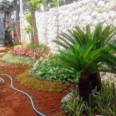 Tukang taman Surabaya -proyek Rumah tinggal: Halaman depan oleh Tukang Taman Surabaya - Tianggadha-art, Tropis Batu