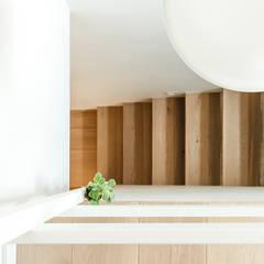 Sezam disseny d'Interiors SL의  계단, 북유럽 우드 우드 그레인