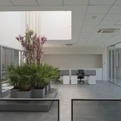 Jardins de inverno  por Studio Associato Sezione d'Architettura