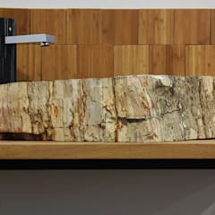 Natural petrified wood vessel sinks:  Bathroom by Lux4home™ Indonesia