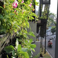 Jardines en la fachada de estilo  por sigit.kusumawijaya | architect & urbandesigner