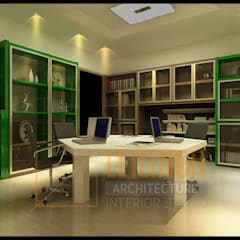 شركات تنفيذ CV Leilinor Architect