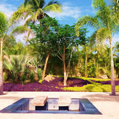 :  Garden by PaisajesyAmbientes, Tropical