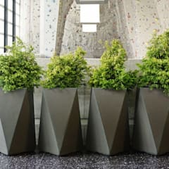 FRP Multi Dimensional Planter:  Office buildings by Scube Creations