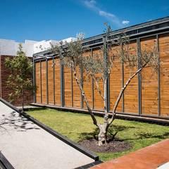 Jardín acceso: Salones para eventos de estilo  por Loyola Arquitectos