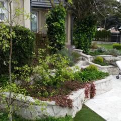 Un Jardín Clásico para una casa Clásica Jardines clásicos de Vivero Antoniucci S.A. Clásico