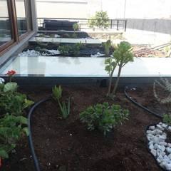 Paisajismo y Piscina en Chamisero: Jardines con piedras de estilo  por Deck and Garden