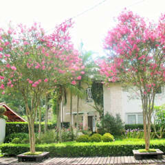 Casagrande: Jardins campestres por lu alves paisagismo