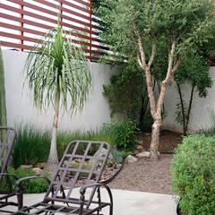 Vista del área oriente desde la terraza.: Jardines de piedra de estilo  por Hábitas