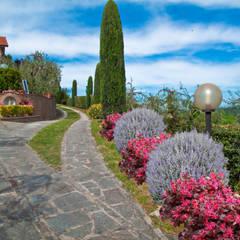 Front garden by AplusP  Architettura e Paesaggio