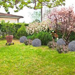 Giardino di campagna - Casa EC: Giardino in stile  di AplusP  Architettura e Paesaggio