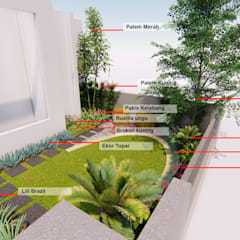 por 1mm studio | Landscape Design Tropical