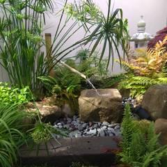 Zen garden by Jardines Japoneses -- Estudio de Paisajismo, Asian