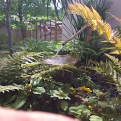 حديقة Zen تنفيذ Jardines Japoneses -- Estudio de Paisajismo