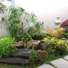 Jardines Ideas Disenos Y Decoracion Homify - Decoracin-jardn