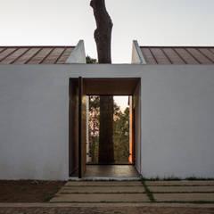 Casa Alrededor de un Pino: Casas de campo de estilo  por EMA Espacio Multicultural de Arquitectura