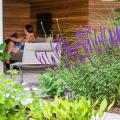 Sfeervolle moderne tuin met veranda:  Tuin door Stoop Tuinen