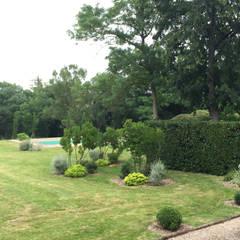 Rosa rosa rosam: Jardin de style de stile Rural par Paradeisos conception de jardin