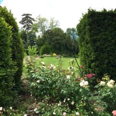 Jardin Images Idees Et Decoration Homify