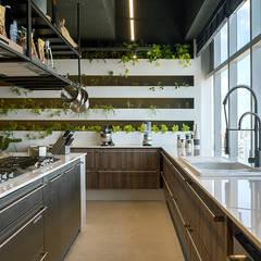 LOFT HORTA 40: Cozinhas  por STUDIO ANDRE LENZA