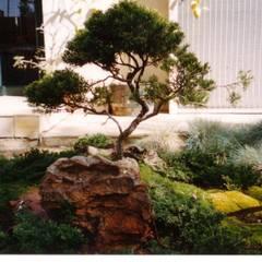 JOFFE:  Garden by Japanese Garden Concepts,