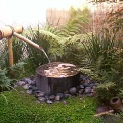 FIENBERG:  Garden by Japanese Garden Concepts, Asian