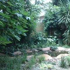 MILLER:  Garden by Japanese Garden Concepts, Eclectic
