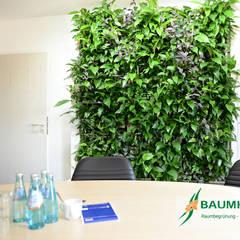 Pusat Konferensi by BAUMHAUS GmbH   Raumbegrünung Pflanzenpflege