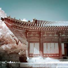 왕후의 시선: PoisonSong의  목조 주택