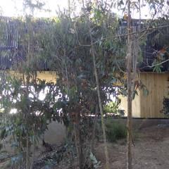 Casa QV: Parcelas de agrado de estilo  por m2 estudio arquitectos - Santiago, Mediterráneo