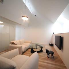 旗竿敷地で天窓と中庭で開放的な住まい: 石川淳建築設計事務所が手掛けたリビングです。