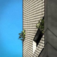 See-through Building: HBA-rchitects의  주택